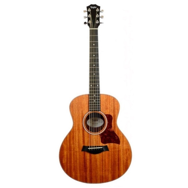 GS MINI Mahogany-01